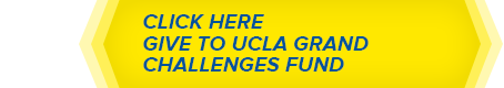 Give to UCLA Grand Challenges Fund