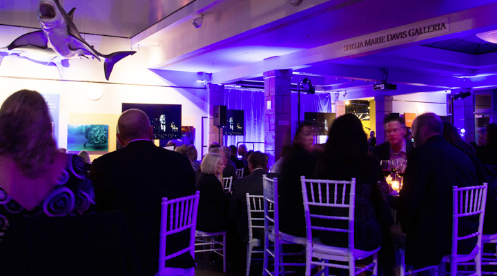Attendees sit around tables under dramatic lighting and marine animal models hanging from the ceiling